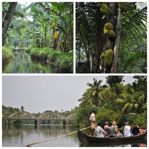 Backwater, Kerala w Indiach•foto: D. Jaworska