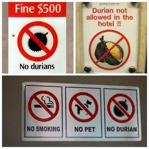 Nie wchodzić z durianem