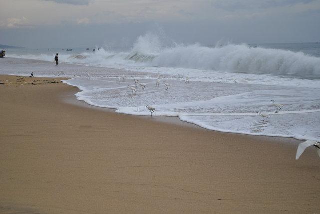 Vizhinjam w Kerali, to okolice dzikiego Kovalam na południowo-zachodnim wybrzezu Indii. To rejon dzikich plaż, niebezpiecznych, z silnymi prądami i wysokimi falami.