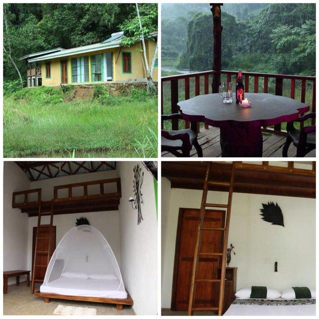 Sinharaja Forest Edye - Guest House został urządzony nowocześnie i wygodnie. Deniyaya, Sri Lanka•Foto: booking.com
