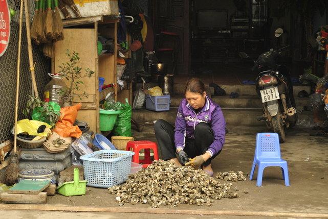 Wyspa poławiaczy ostryg - Đảo Tuần Châu, Wietnam•foto: D. Jaworska
