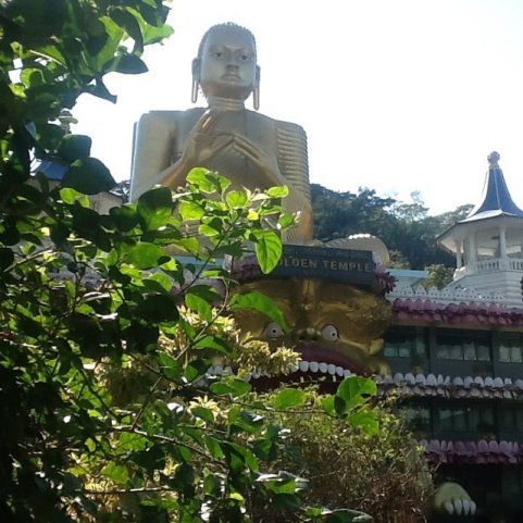 Budda w Damballa, Sri Lanka•Foto: D. Jaworska