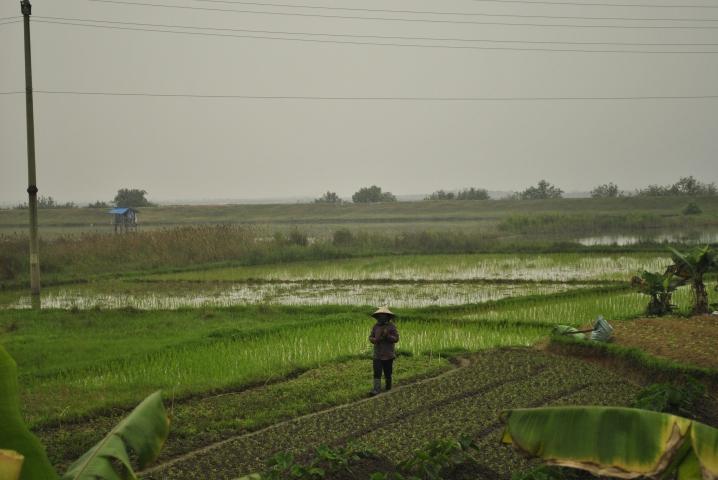 Na wyspie Tuan Chau w zatoce Ha Long. wietnam. Foto: D. Jaworska